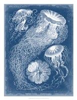Marine Blueprint II Fine-Art Print