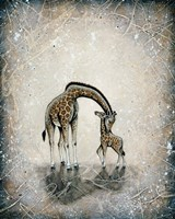 My Love for You - Giraffes Fine-Art Print