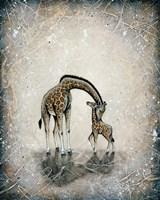 My Love for You - Giraffes Fine-Art Print