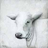 January Cow II Fine-Art Print