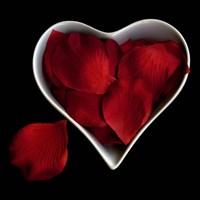 Love Overflowing - Heart Valentine Petals Fine-Art Print
