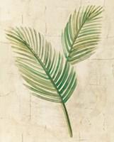 Sago Palm Leaves Neutral Crop Fine-Art Print