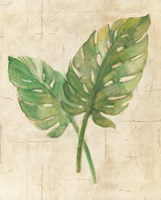 Monstera Leaves Neutral Crop Fine-Art Print