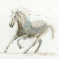 Stallion II Fine-Art Print