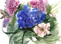 Watercolor Garden II Fine-Art Print