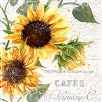 Summertime Sunflowers II Fine-Art Print