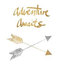 Adventure Arrows Fine-Art Print