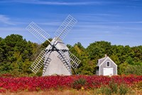Higgins Farm Windmill Fine-Art Print