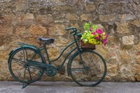 Green Bicycle Fine-Art Print
