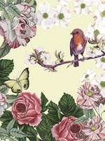 Bird Garden II Fine-Art Print