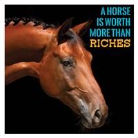Horse Quote 6 Fine-Art Print