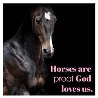 Horse Quote 8 Fine-Art Print