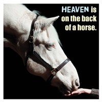 Horse Quote 9 Fine-Art Print
