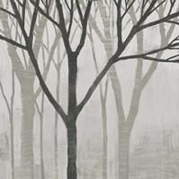 Spring Trees Greystone II Fine-Art Print