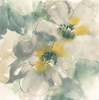 Silver Quince I Fine-Art Print