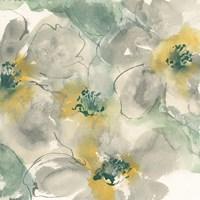 Silver Quince II Fine-Art Print