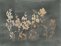 Gold Foil Flower Field on Black - Metallic Foil Fine-Art Print