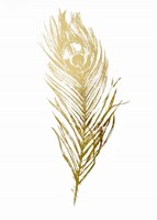 Gold Foil Feather II - Metallic Foil Fine-Art Print