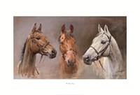 We Three Kings Fine-Art Print