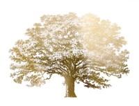 Gold Foil Elephant Tree - Metallic Foil Fine-Art Print