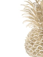 Pineapple Life IV Fine-Art Print