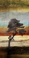 Fall Colors II Fine-Art Print