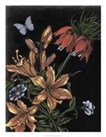 Dark Floral II Fine-Art Print