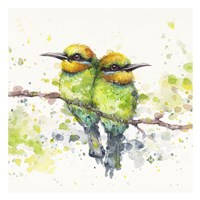 Family (Rainbow Bee Eaters) Fine-Art Print