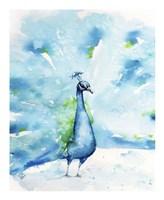 Peacocking Around Fine-Art Print