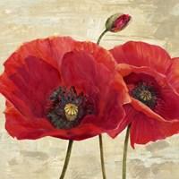 Red Poppies (detail II) Fine-Art Print
