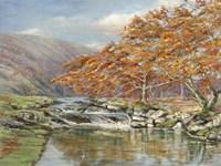 Ruscello Silvestre Fine-Art Print