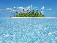 Tropical Lagoon with Palm Island, Maldives Fine-Art Print
