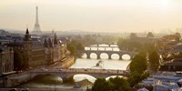 Bridges over the Seine River, Paris Sepia Fine-Art Print