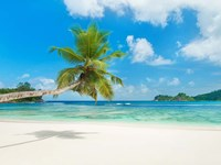 Tropical beach, Seychelles (detail) Fine-Art Print