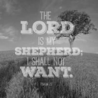 Psalm 23 The Lord is My Shepherd - Field Fine-Art Print