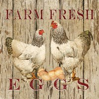 Farm Fresh Eggs II Framed Print