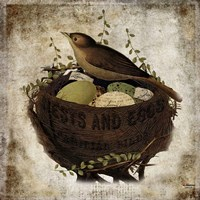 Nest & Eggs Fine-Art Print
