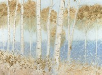 Summer Birches Fine-Art Print