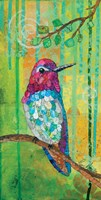 Anna's Hummingbird Fine-Art Print