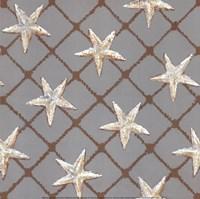 Net Full of Stars Fine-Art Print