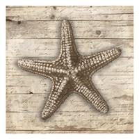 Wooden Star Fine-Art Print