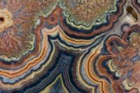 Flowering Tube Onyx, Mexico 2 Fine-Art Print