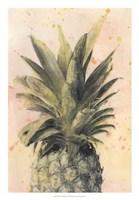 Pineapple Delight I Fine-Art Print