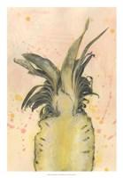 Pineapple Delight II Fine-Art Print