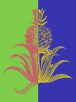 Pineapple Mix I Fine-Art Print