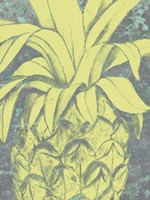 Kona Pineapple I Fine-Art Print