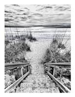Follow the Steps Fine-Art Print