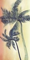 Vintage Palms I Fine-Art Print