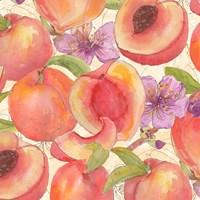 Peach Medley II Fine-Art Print