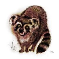 Koalacoon Fine-Art Print